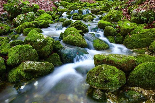 Водный Источник Торрент