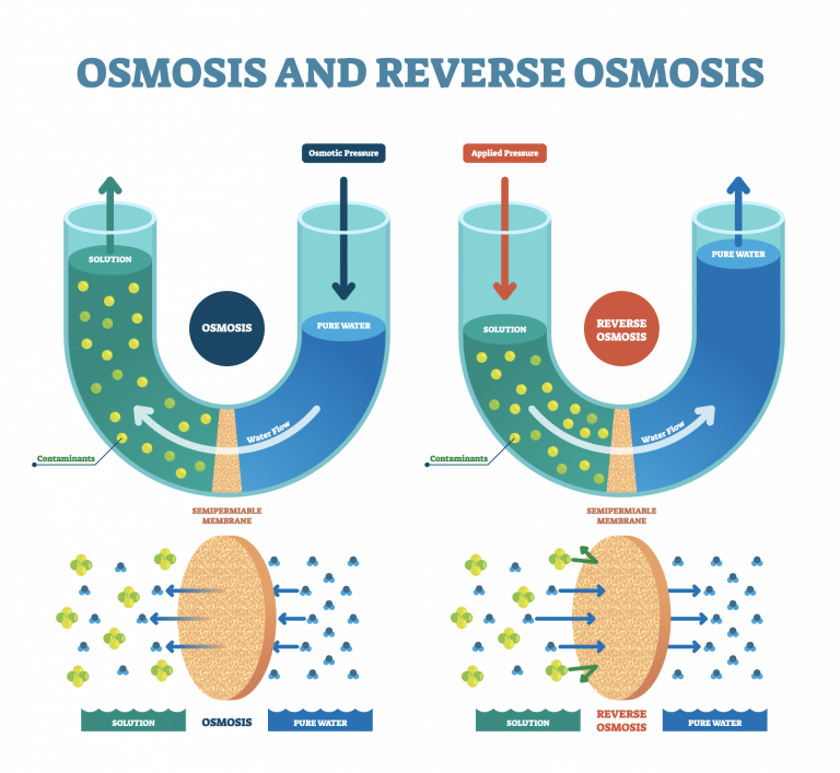 Diagram showing the process of osmosis and reverse osmosis in water filter systems