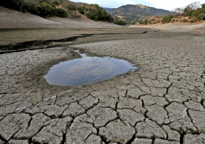 Our World's Water Resources Are in Crisis. Here's What You Can Do About It
