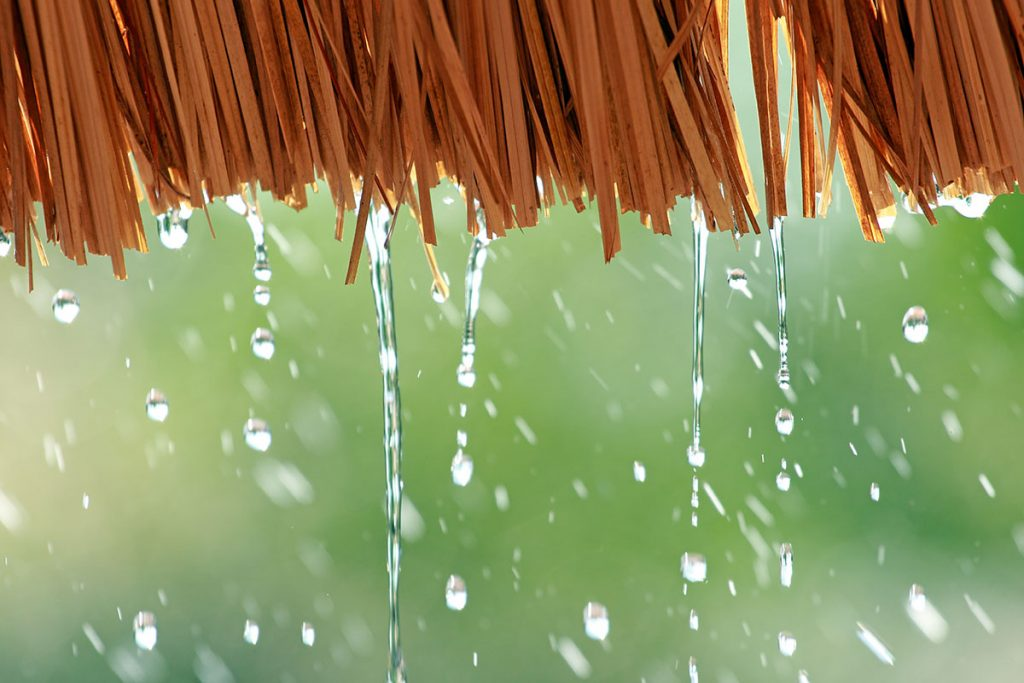 Water drop falling from the straw roof