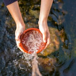 The Secret Life Of Well Water: Tips For Private Well Owners