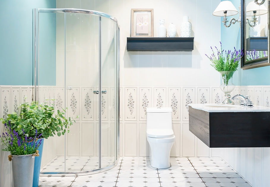 Image of a washroom with glass stand up shower and two handle bathroom faucet, toilet, and plants.